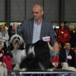 Kymora in Brno European dogshow 1e intermediair